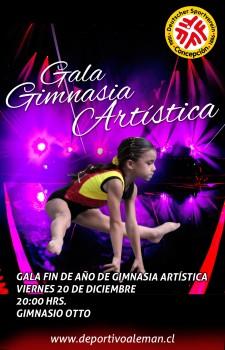afiche de gala gimnasia artistoca