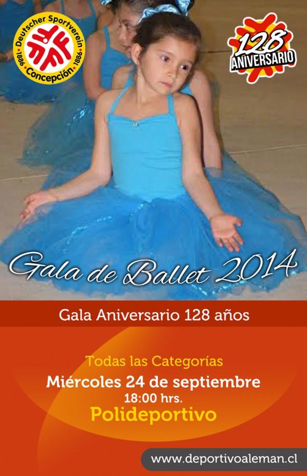 afiche gala ballet 2014