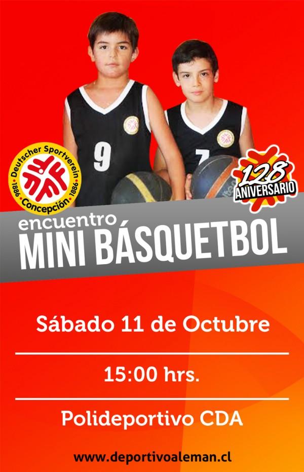 afiche mini bsquet 128